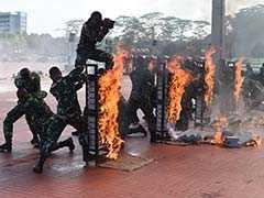 Snake Blood, Flaming Bricks: Jim Mattis Gets Bizarre Indonesian Send Off