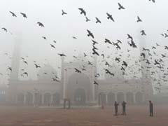On New Year Day, Pollution On Edge Of Emergency Level In Delhi
