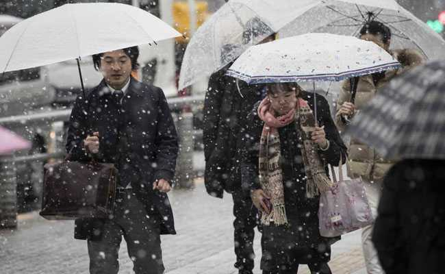 Heavy snow warning issued for Tokyo wards as peak nears