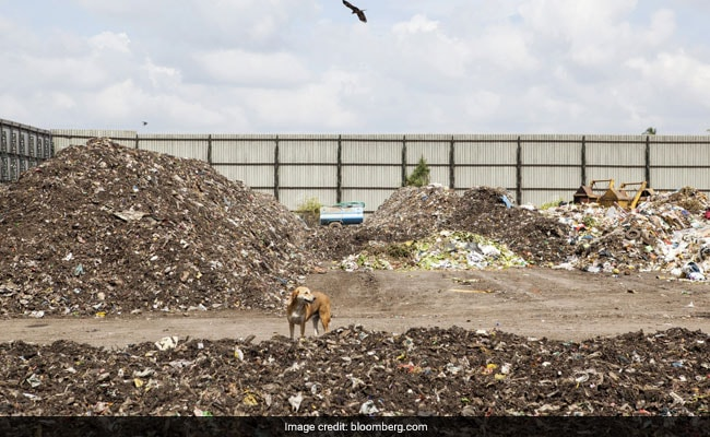One City Is Turning A Mountain Of Trash Into Cash