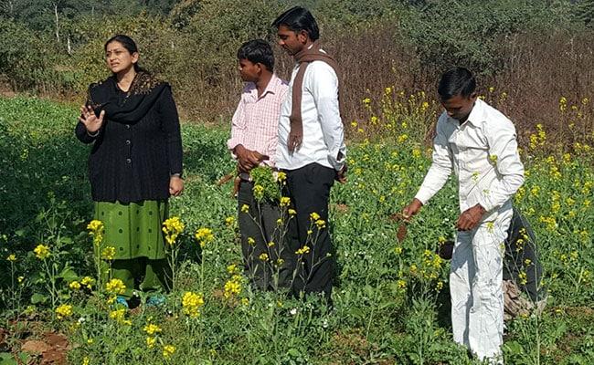organice farming