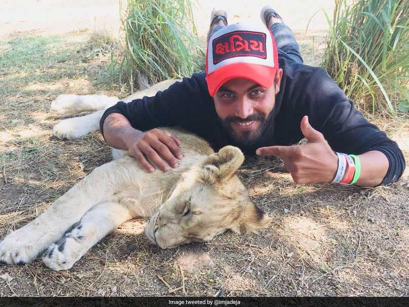 India vs South Africa: Ravindra Jadeja Visits Wildlife Sanctuary In SA, Posts Picture With A Lion