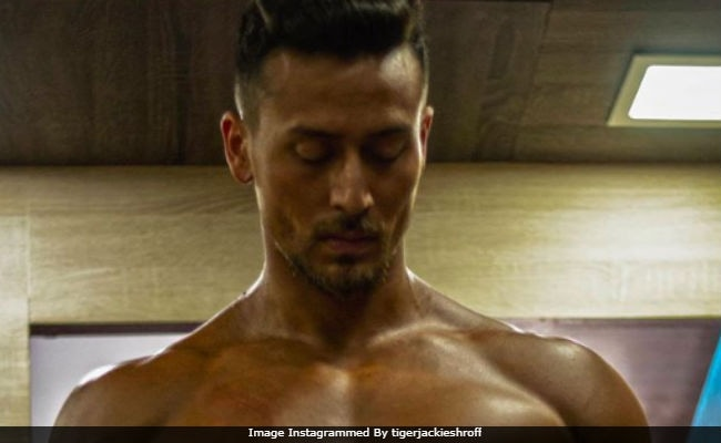 Tiger Shroff's Baaghi 2 Gets A Release Date. 'Ready To Fight, Guys?'