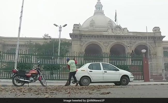 up farmers throw potatoes