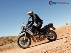 Triumph Tiger Population In India Crosses 900