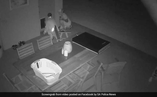 Video: Thieves Enter Home By Squeezing Through Dog Door