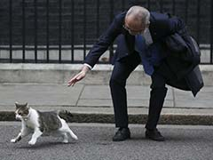 When Larry The Cat Snubbed Mitsubishi Boss Outside 10 Downing Street