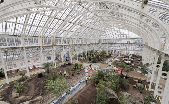 Giant London Glasshouse To Re-Open With World's Rarest Plants