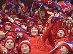 'Army Of Beauties' Reveal A Cultural Divide Across The Two Koreas