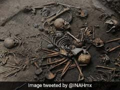 Mysterious Circle Of Intertwined Human Skeletons Unearthed By Mexican Archaeologists