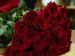 Happy Rose Day 2018: शुरू हुआ वैलेंटाइन वीक, जानिए किस रंग का गुलाब भेजना चाहिए?