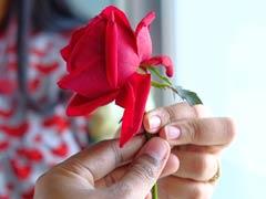 Rose Day 2018: करें Valentine's Week की शुरुआत इन स्पेशल मैसेजेस के साथ