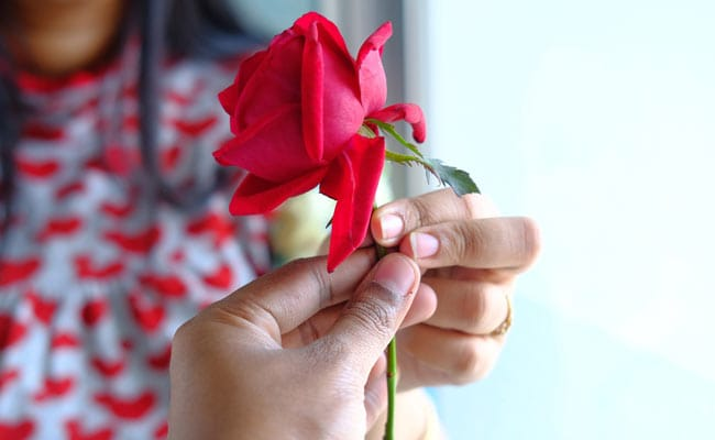 Image result for rose day images