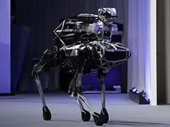 People Freaked Out After Robot Dogs Opened A Door. Now They're Resisting Humans.