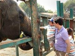 The Justin Trudeau Family Meets Maya, Bijlee And Lakshmi - The Elephants At Mathura Wildlife Sanctuary