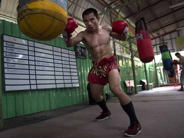 Undefeated Thai Dwarf Giant One Win From Floyd Mayweather Record