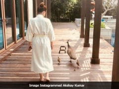 After Twinkle Khanna, Now Akshay Kumar Posts A Click Of The Trespassing Peahen