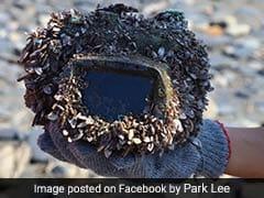 समुद्र में खोया कैमरा 2 साल बाद मिला, ऑन किया तो फुल चार्ज और पानी की एक बूंद तक नहीं