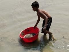 बांग्लादेश: खतरे में खेती तो अपनाया केकड़ा पालन का रास्ता