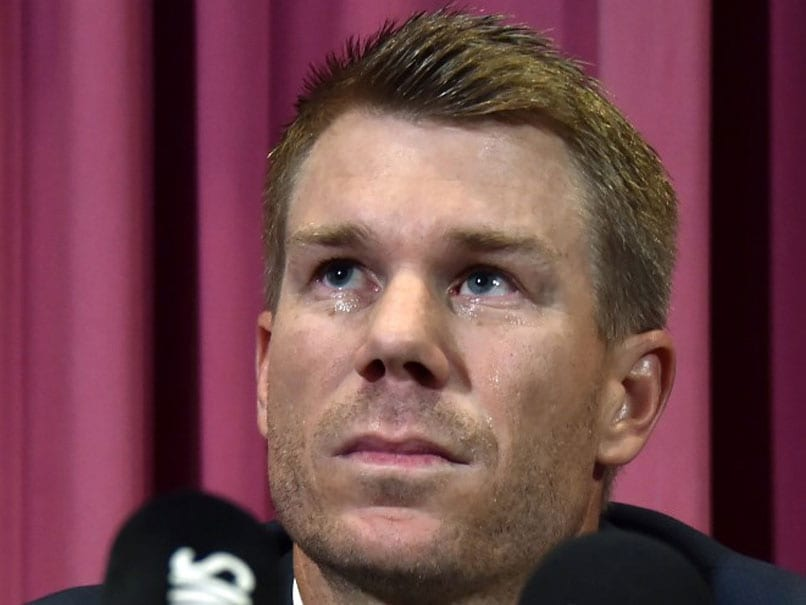David Warner Apologises
