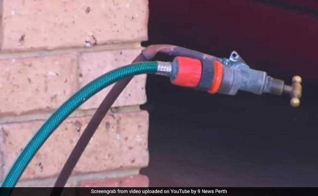 denishar woods hose pipe electrocution