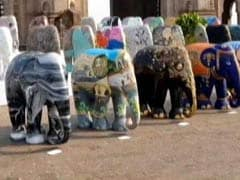 A Hit In UK, Elephant Parade In India To Raise Animal Conservation Funds