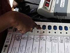 Top Contenders In Palghar, Kairana And Bhandara-Gondia By-Elections