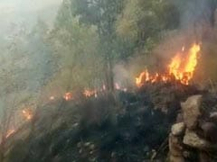 तमिलनाडु के थेनी के जंगलों में लगी भीषण आग, करीब 30 छात्र फंसे