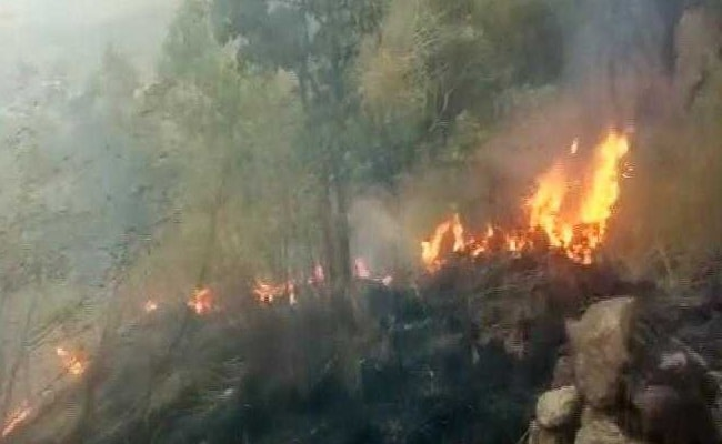 Theni Fire Highlights: About 30 Caught In Tamil Nadu Forest Fire, IAF On Rescue