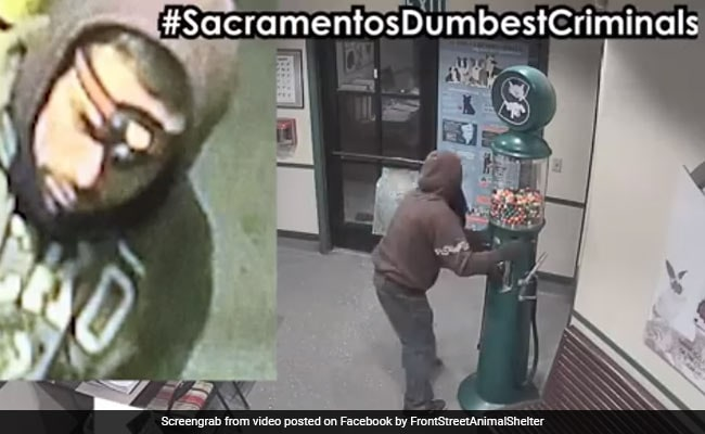 In Bizarre Theft, 'Candy Crook' Slips And Slides On Hundreds Of Gumballs