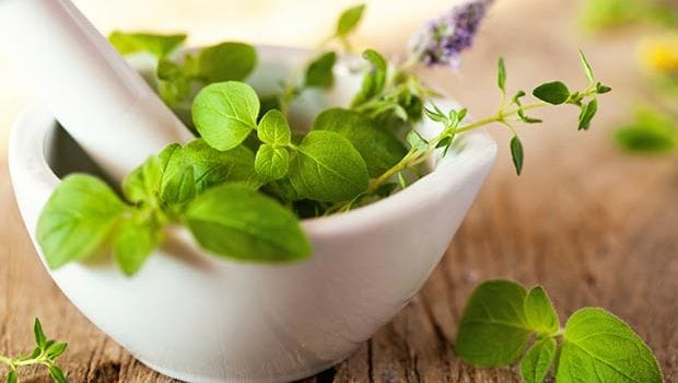 Anti-Ageing Herbs: 8 Ayurveda Herbs To Slow Down Ageing - NDTV Food