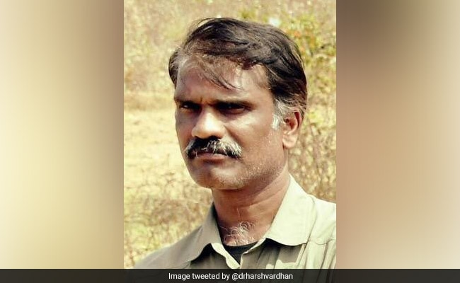 On World Wildlife Day, Top Forest Officer Crushed To Death By Elephant
