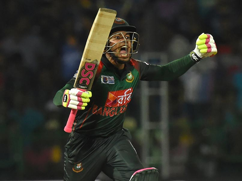 Mushfiqur leads Bangladesh to record chase in T20 tri-series