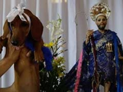 At This Festival, Pet Owners Seek Divine Intervention To Cure Dogs