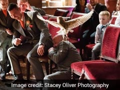Ring-Bearer Owl Goes Rogue, Disrupts Wedding And Attacks Best Man