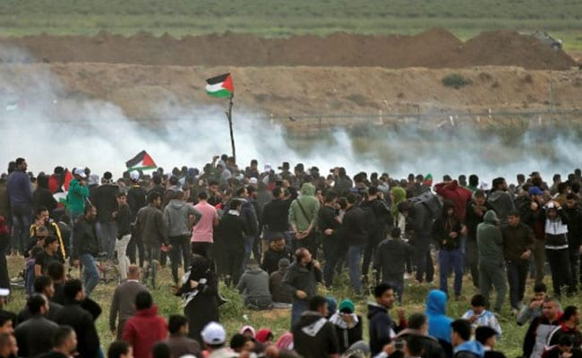 'I Don't Want This Life': 15 Palestinians Shot Dead By Israeli Army