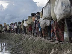 Myanmar Erects Security Structures, Helipads, Roads On Torched Rohingya Properties: Amnesty