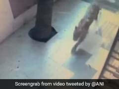 VIDEO: घर के अंदर मजे से टहल रहा था तेंदुआ, देखें क्या हुआ जब देखा गार्ड ने