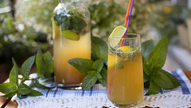 Chamomile Vodka Cooler