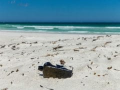The World's Oldest Message In A Bottle Survived 132 Years. Now It's Been Found