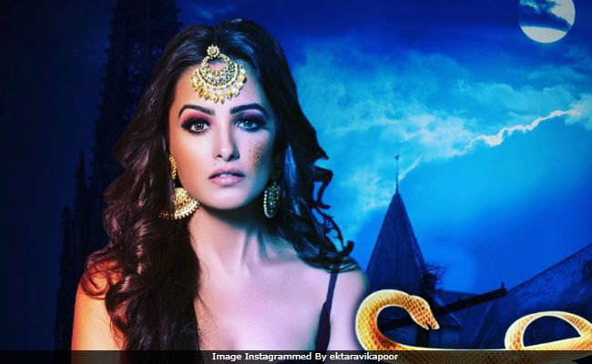 Naagin 3: After Karishma Tanna, Please Welcome Anita Hassanandini As A Snake Woman