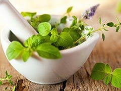 Summer Diet: These Cooling Herbs Can Help You Beat The Summer Heat