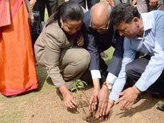 President Ram Nath Kovind Plants Baobab Sapling At Rashtrapati Bhavan. This Tree Lives For 2000 Years!