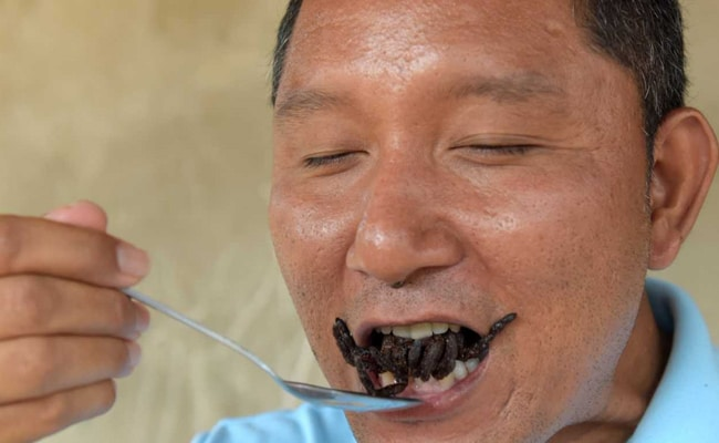 In This Cambodian Town, Tarantulas May Go Off Menu. Here's Why