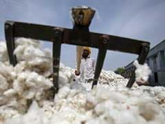 Virus Outbreak Delays India's Cotton Exports To China
