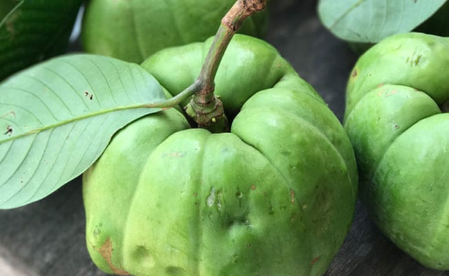 Garcinia Cambogia: 6 Health Benefits Of Garcinia Cambogia You Should Know