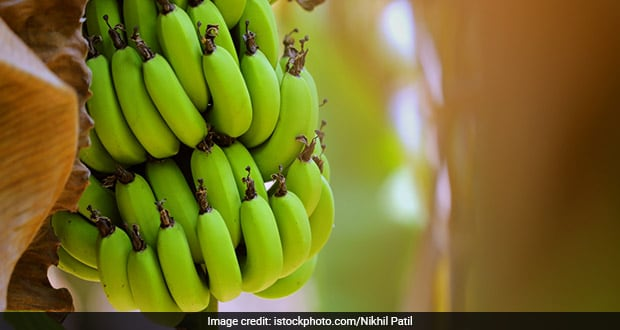7 Amazing Green Banana Benefits You May Not Have Known