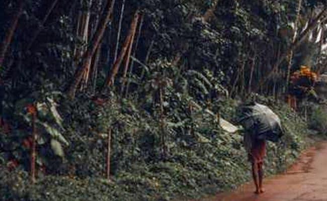 Monsoon Rains To Arrive On Kerala Coast On May 29