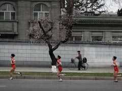 Loneliness Of The Long Distance Runners In North Korea