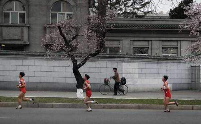 Tons of of foreigners be part of Pyongyang race as tensions ease